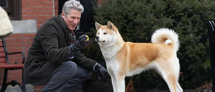 Hachi – A Dog's Tale