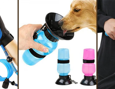 19 Products That'll Solve A Bunch Of Pet Problems For You